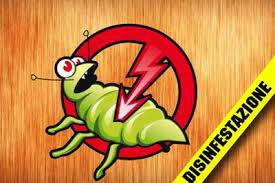 Contatta Solution Disinfestazione Roma per liberarti degli insetti infestanti.